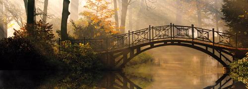 Brücke über einen Fluss im Wald.